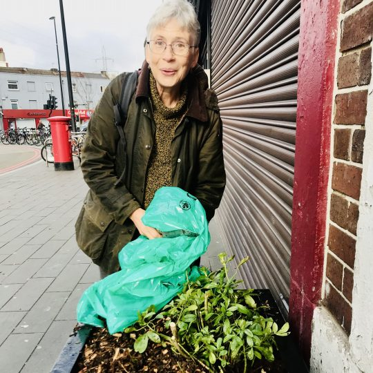 Colliers-Wood-Parks-and-Green-Spaces-Volunteers-High-Street-planter-Nov-2020