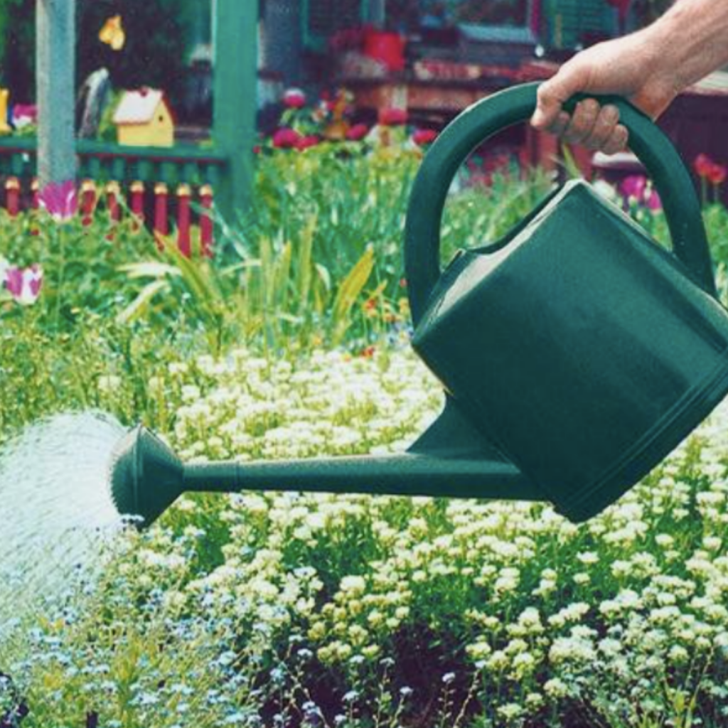 Colliers-Wood-Parks-and-Green-Spaces-Volunteers-Watering-Can